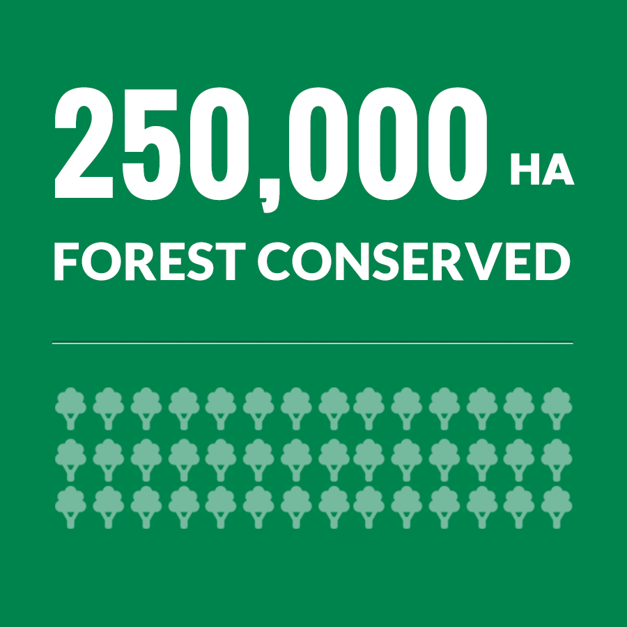 250,000 Ha Forest Conserved