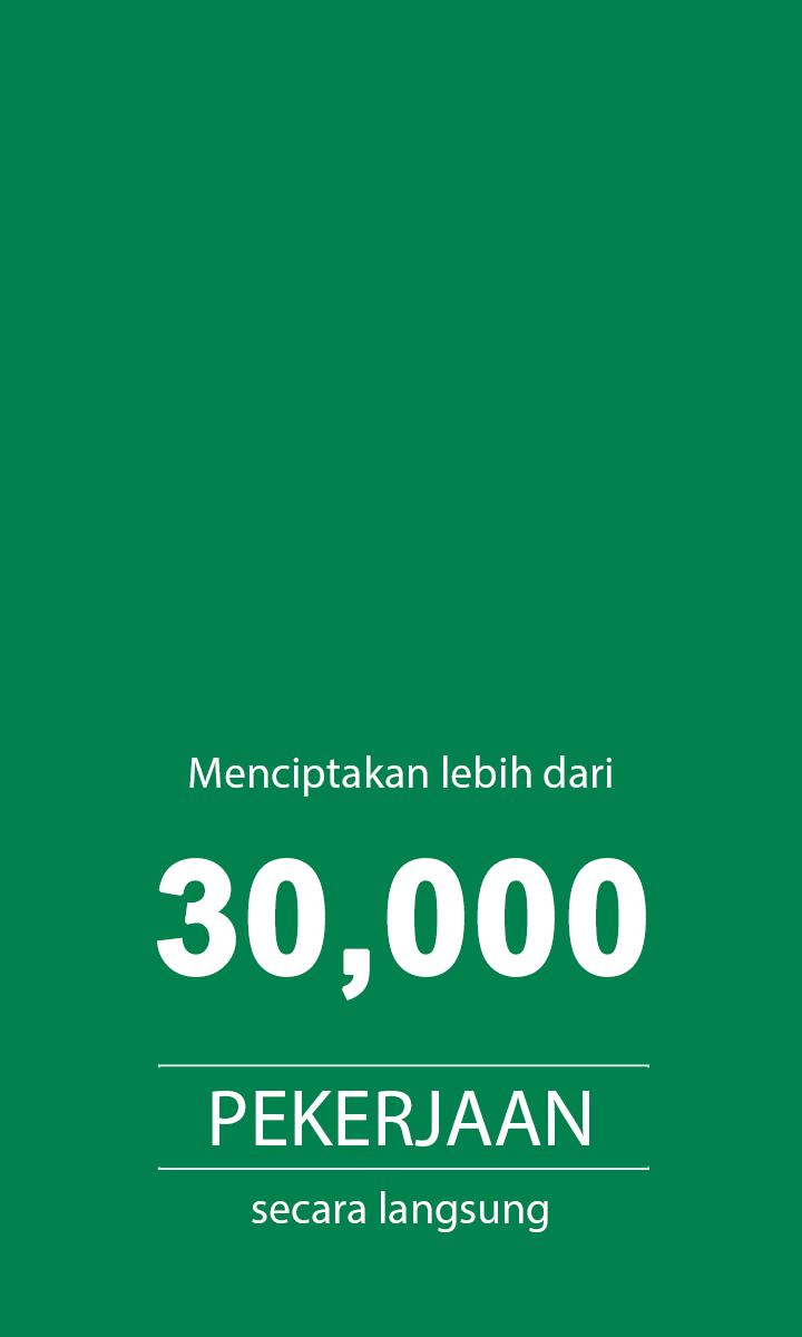 30,000 pekerjaan