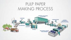 Ingin Tahu Proses Pembuatan Kertas? Ini ...