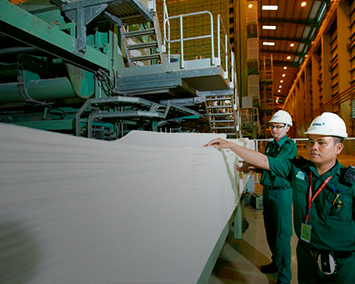 HOW IS PAPER MADE?