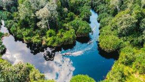 Restorasi Ekosistem Riau (RER)...